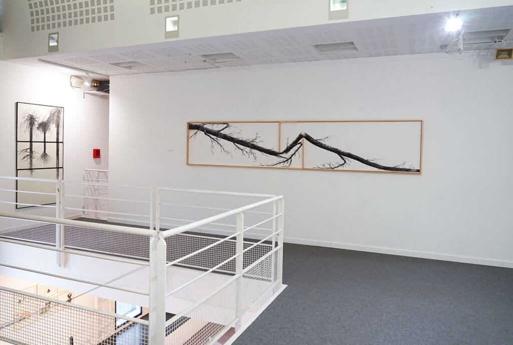 Cédric Jolivet, Factices Adventices, vue de l'exposition